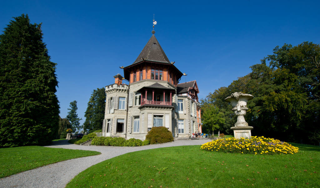 Dreilindenpark Konsipark Luzern Outdoor Yoga